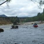 Sediment cliffs upstream of log jam