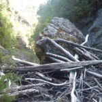 Log Jam - Indaba passage